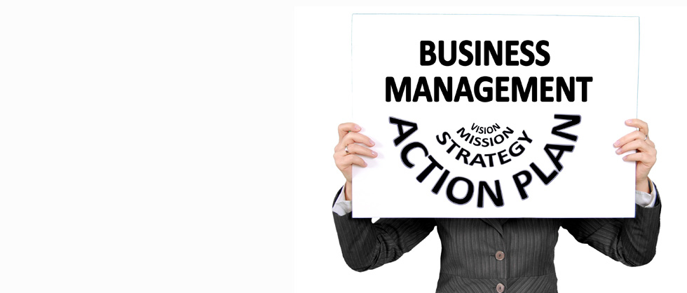 Use specialized consulting skills to improve your business.